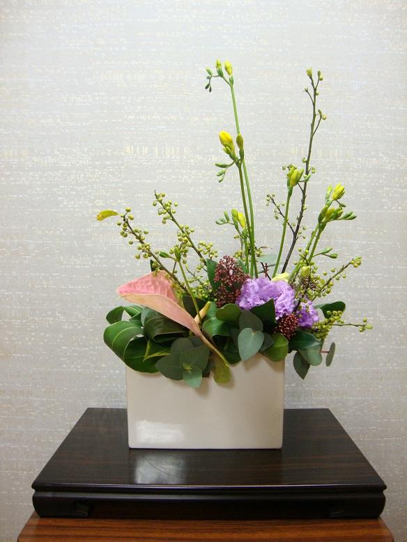 今週の花「暖冬」