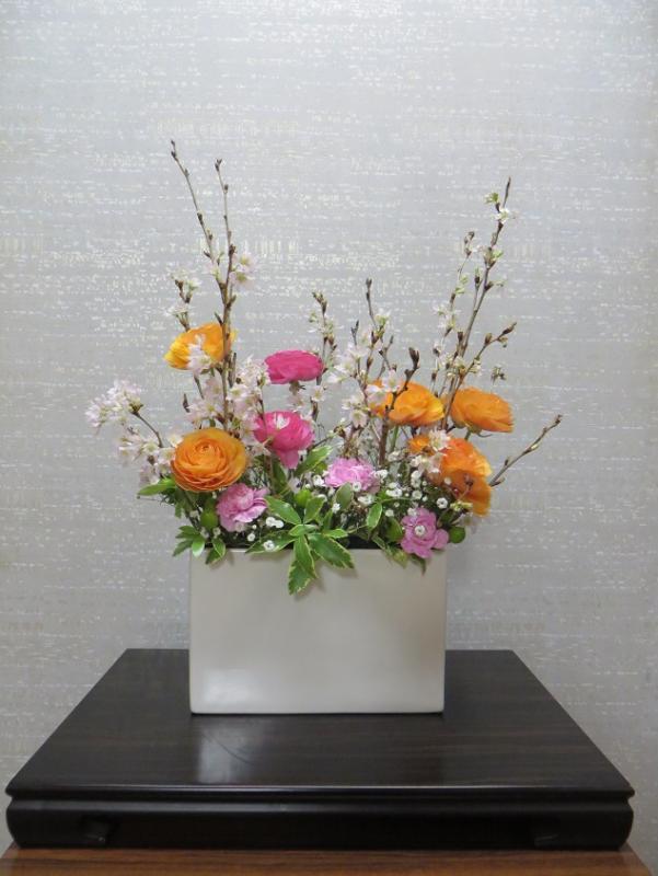 今週の花「お花見」