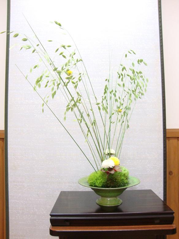 今週の花[菊がおしゃべり]