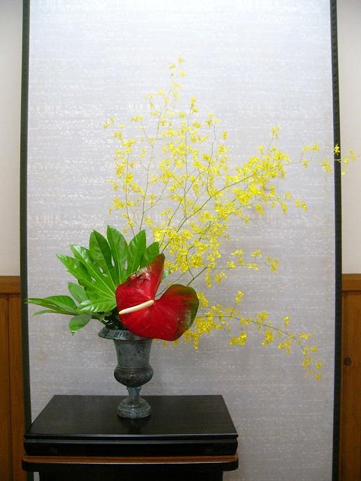 今週の花「初夏のきらめき」