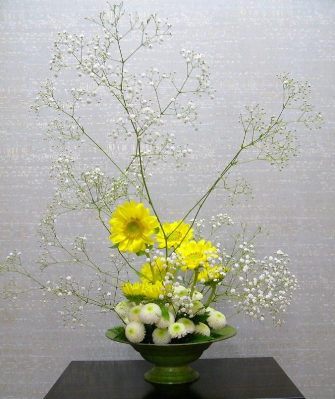 今週の花「晴れを待ってます」