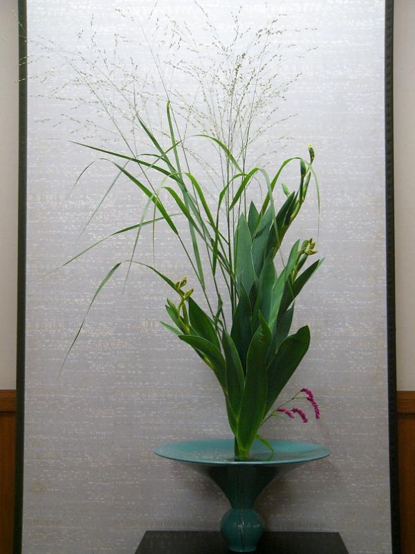 今週の花「京都の夏-祇-」