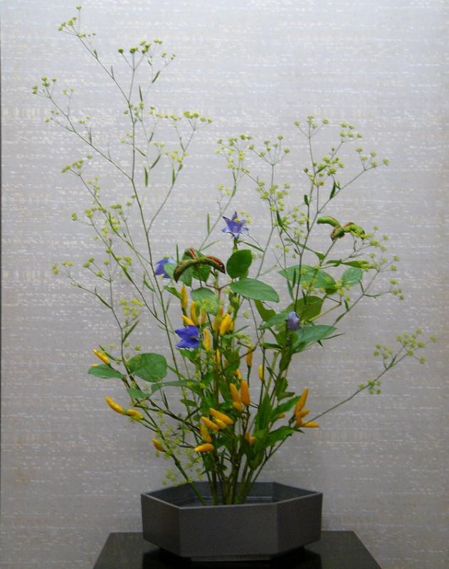 今週の花「夏のきらめき」