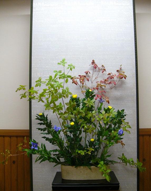 今週の花「深まる秋」
