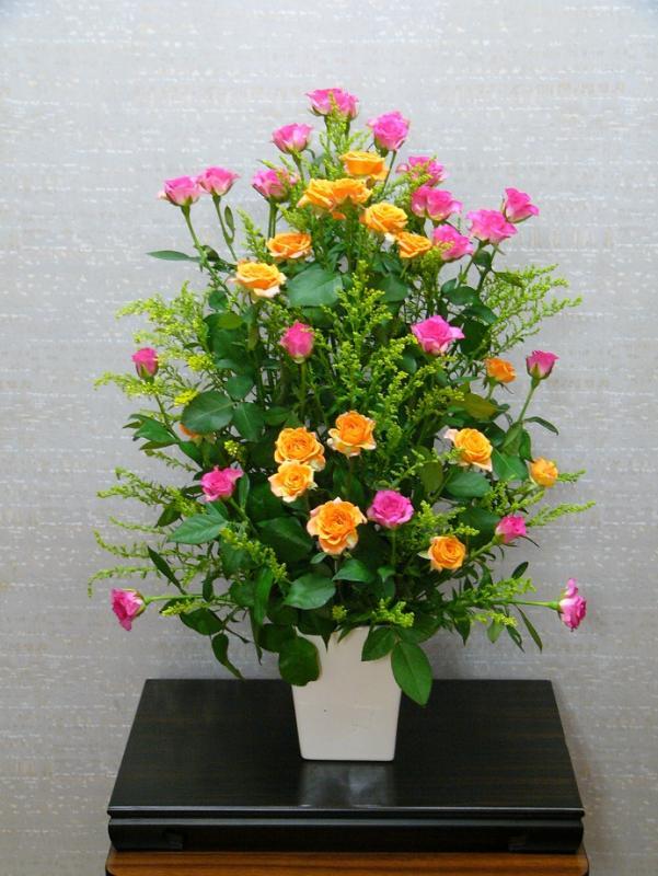 今週の花「ほかほか色」