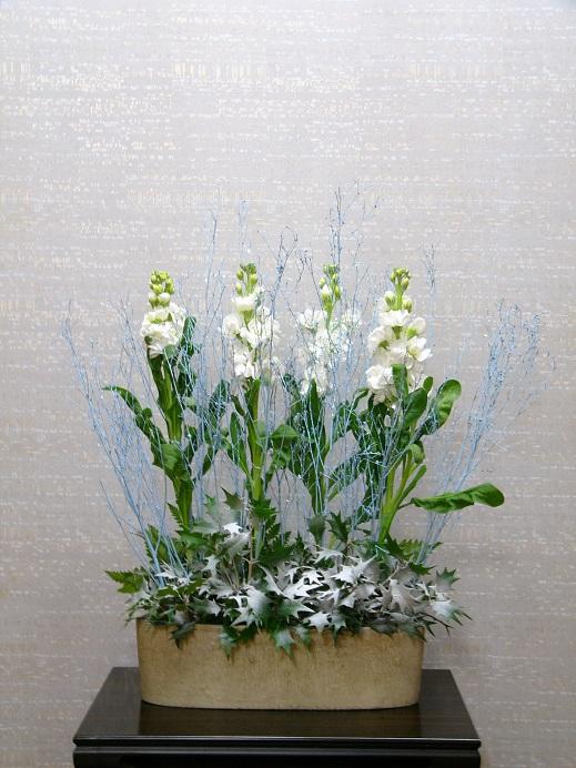 今週の花「大人色クリスマス」