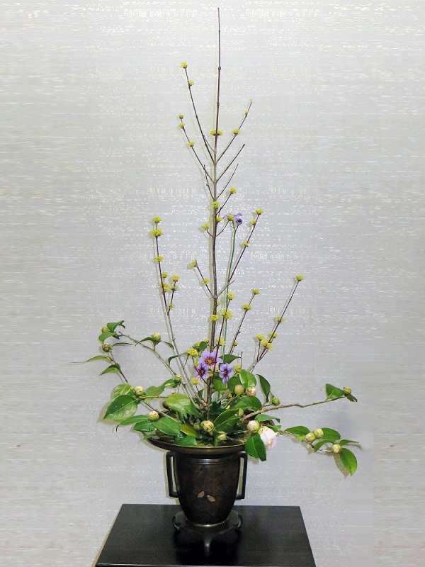 テーマ:春風(しゅんぷう)