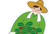 新規就農の促進