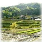 農村振興イメージ