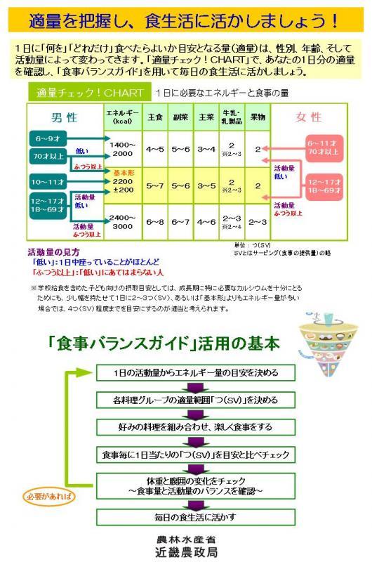 食事バランスガイド解説パネル(その3)
