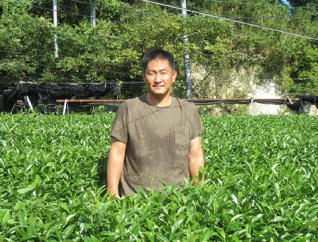 高品質な碾茶を作り続けたい|京都府木津川市
