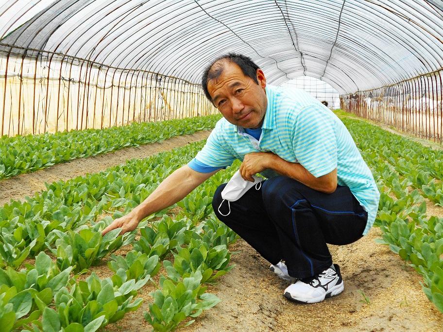集落で続いてきた野菜栽培を繋げたい|奈良県天理市