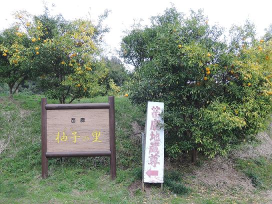 yuzunosato1