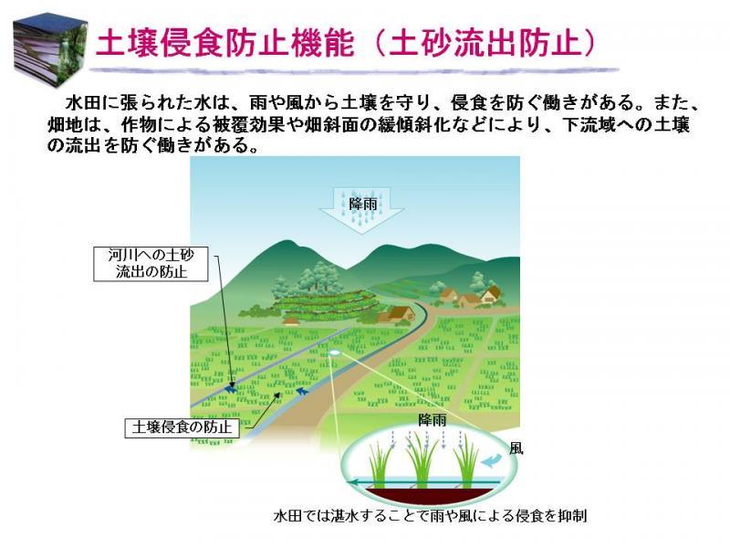 土壌侵食防止