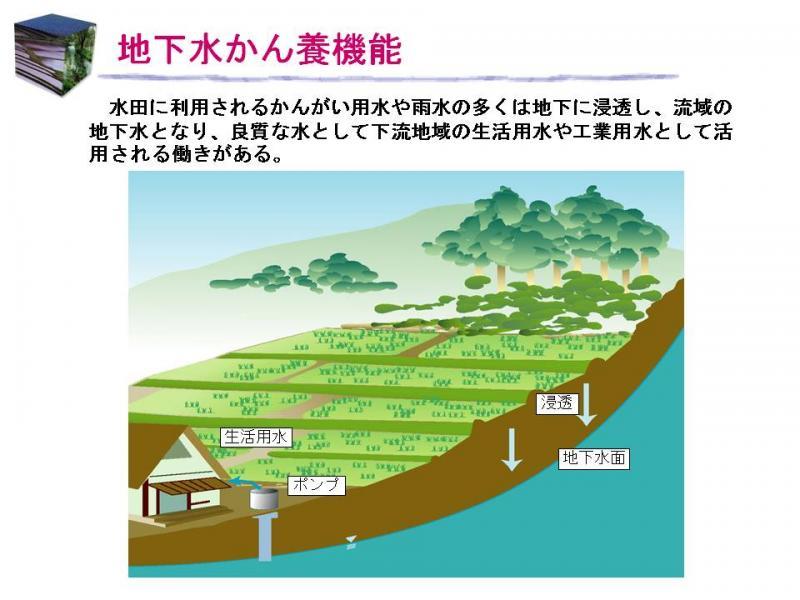 地下水涵養