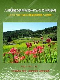 九州地域の農業経営体における取組事例