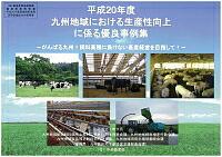 「平成20年度九州地域における生産性向上に係る優良事例集」の表紙画像