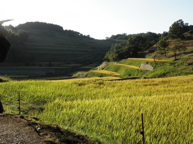 白糸台地の「重要文化的景観」