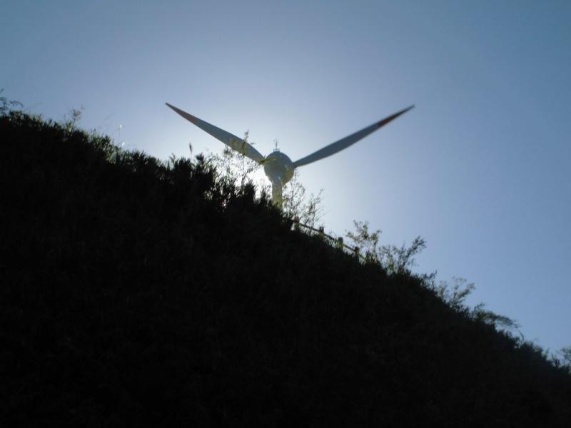 風力発電1