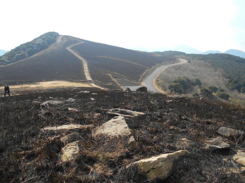 平戸市川内峠の野焼き後の風景