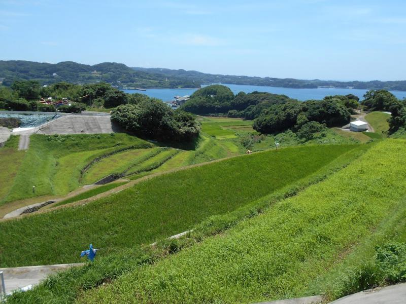 壱岐市北部の条件不利な水田風景です。