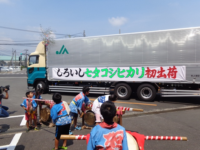佐賀の七夕コシヒカリが初出荷を迎えました。