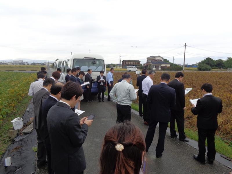 大豆圃場の現地視察を行っている様子