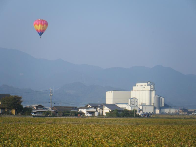 佐賀平野での大豆栽培とバルーンフェスタ