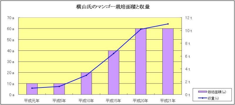 横山氏のマンゴー栽培面積と収量