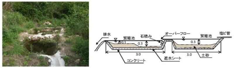両性類等繁殖池の設置