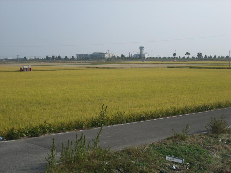 水稲の収穫状況の写真