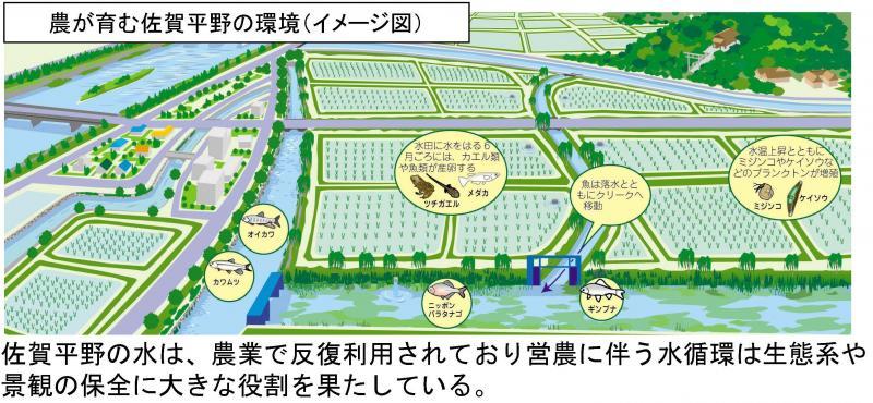 農が育む佐賀平野の環境イメージ図
