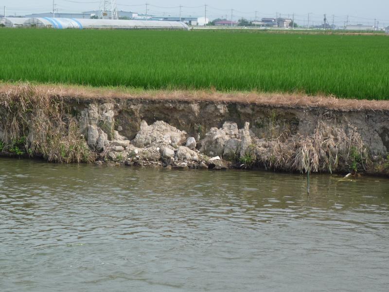 のりめんの崩落による農地への影響の写真