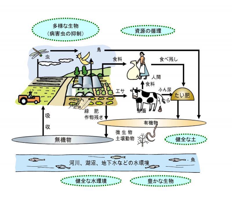 環境に優しい農業イメージ