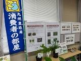 28有毒植物に関する展示