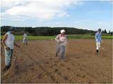 耕作放棄地再生3