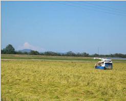 近代的な農業機械に囲まれた美田