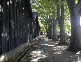 sankyosouko