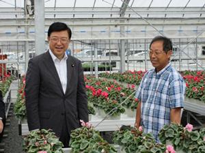 原子力災害から避難先で復興した園芸施設(シクラメン)の現地調査