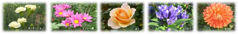 東北の花き