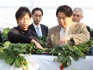 林農林水産大臣の視察宮城県、福島県