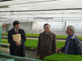 降矢農園を視察する横山農林水産大臣