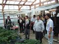 施設園芸実証研究を視察する佐藤農林水産大臣政務官