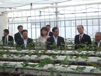 西川農林水産大臣視察