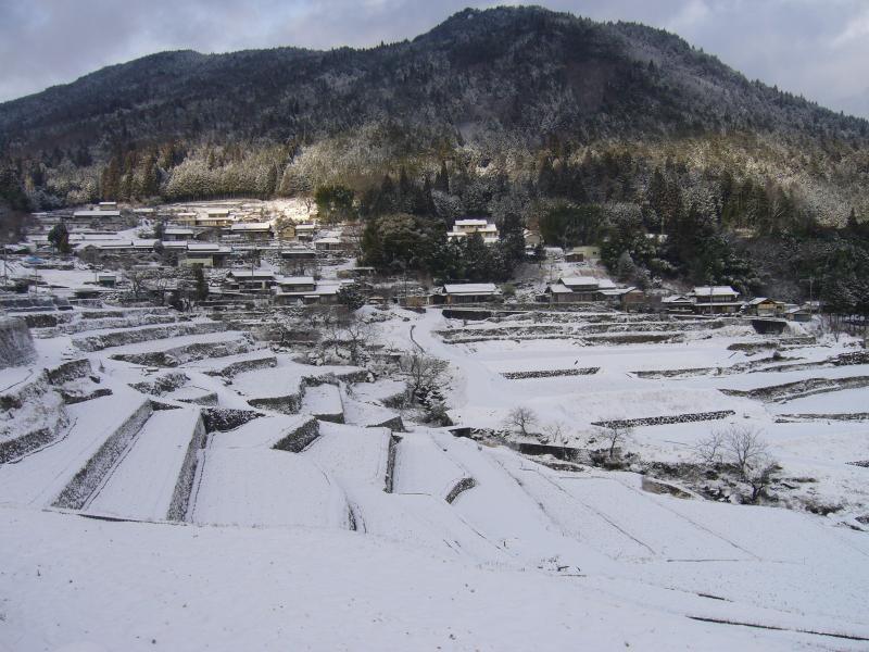 坂折棚田の冬景色