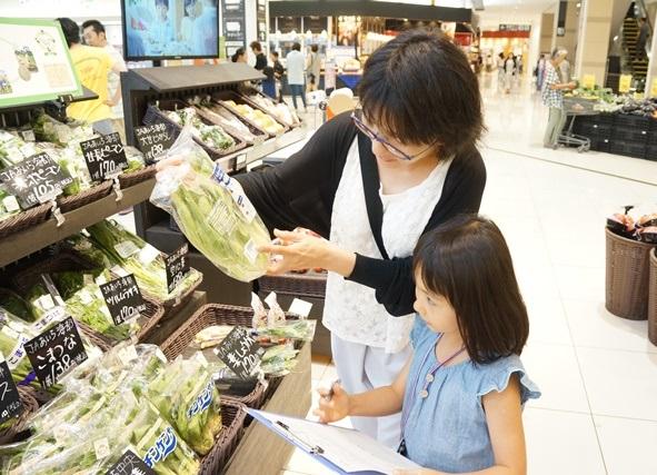 親子で探す野菜