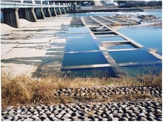 改修前の右岸魚道