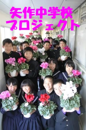 矢作中学校プロジェクト-花の癒し効果調査